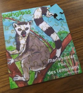 Madagascar, l'ile aux lémurienx